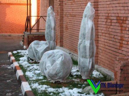 Геотекстиль для утеплення рослин взимку